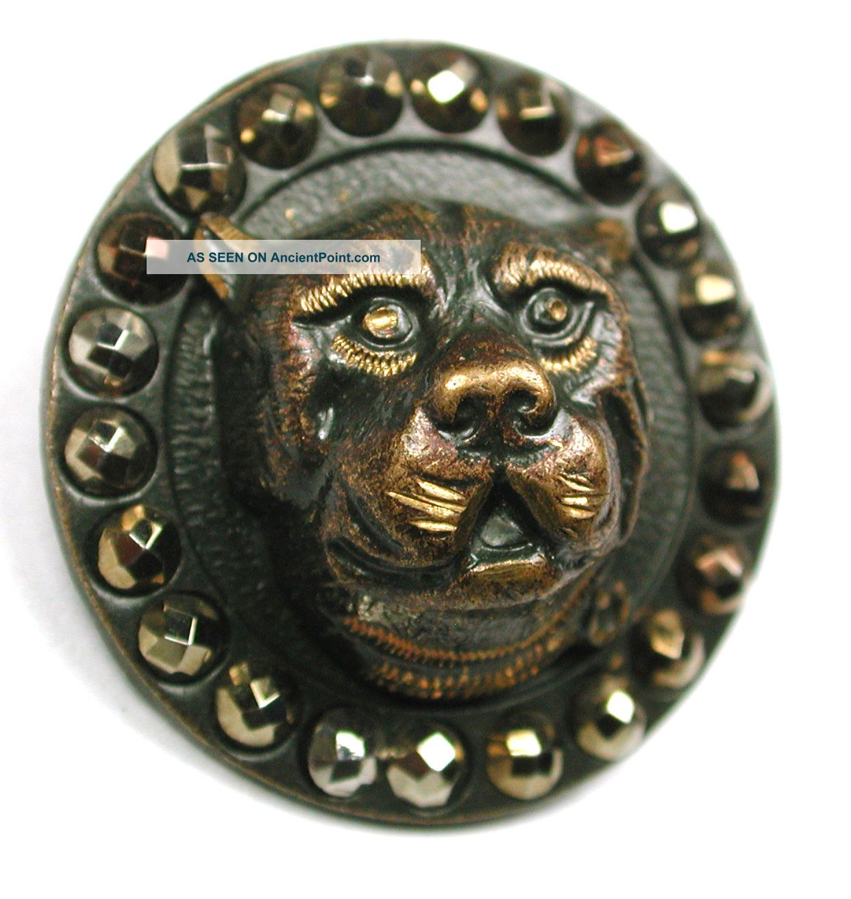 Antique Brass Button Dimensional Boxer Dog Head W/ Cut Steel Border - 15/16