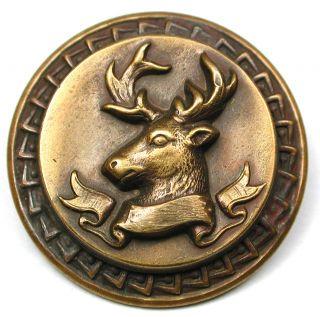 Lg Sz Antique Brass Button Detailed Buck Head W/ Banner Design - 1 & 3/8
