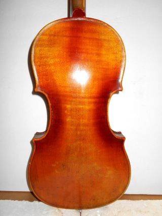 Old Antique Vintage 1 Pc Back Full Size Violin - No Resrve photo