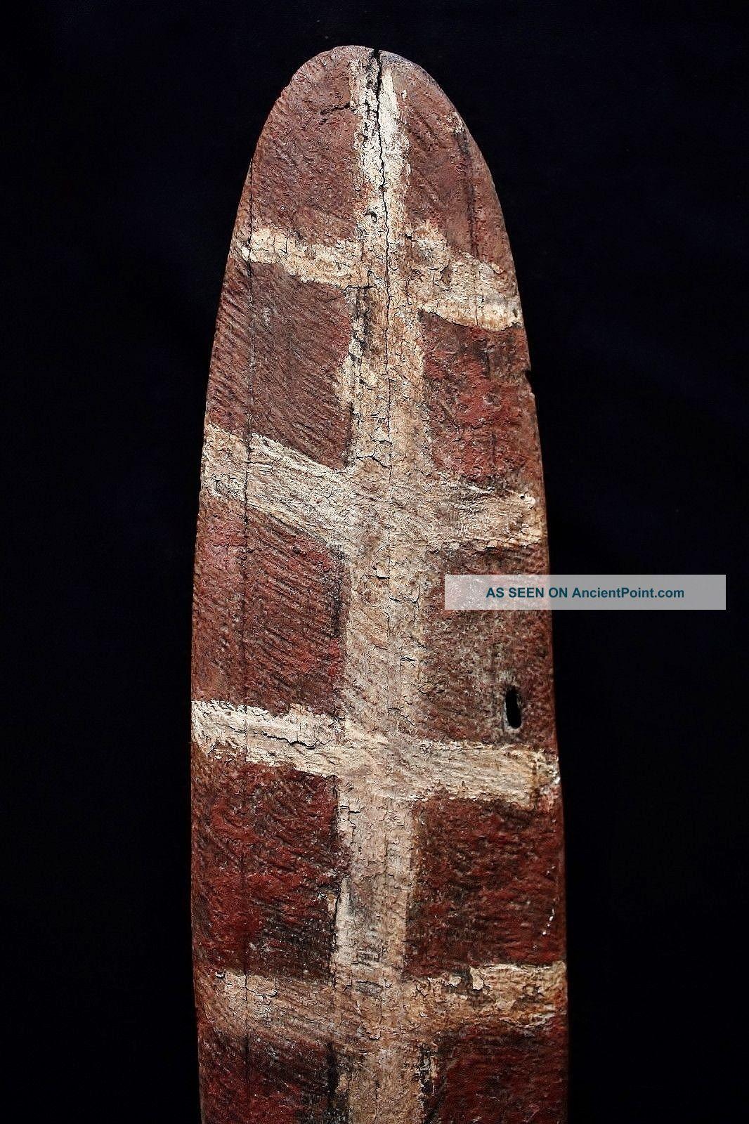 Antique Aboriginal Old Bardi Shield 69cm Pacific Islands & Oceania photo
