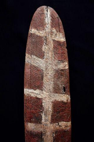 Antique Aboriginal Old Bardi Shield 69cm photo