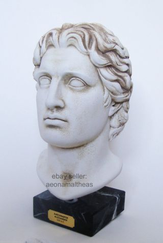 Alexander The Great - Bust Of The Ancient Greek Leader - 30cm photo