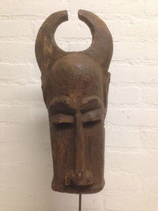 Iv.  Coast: African Rare Old Tribal Baule Mask. photo