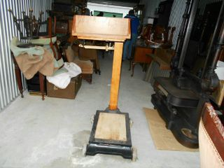 Rare Fairbanks Curley Maple Platform Scale Antique 500lbs.  Feed Store Dairy Farm photo