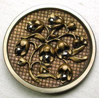 Lg Sz Antique Steel Cup Button Brass Hazelnuts W/ Cut Steel Nuts 1 & 7/16