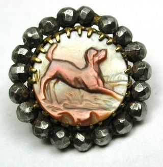 Antique Carved Shell On Brass Button Hound Dog W/ Cut Steel Border 11/16