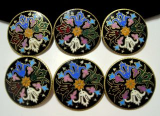 William Morris Antique Champleve Enamel Colorful Large Gilt Brass Buttons 32mm photo