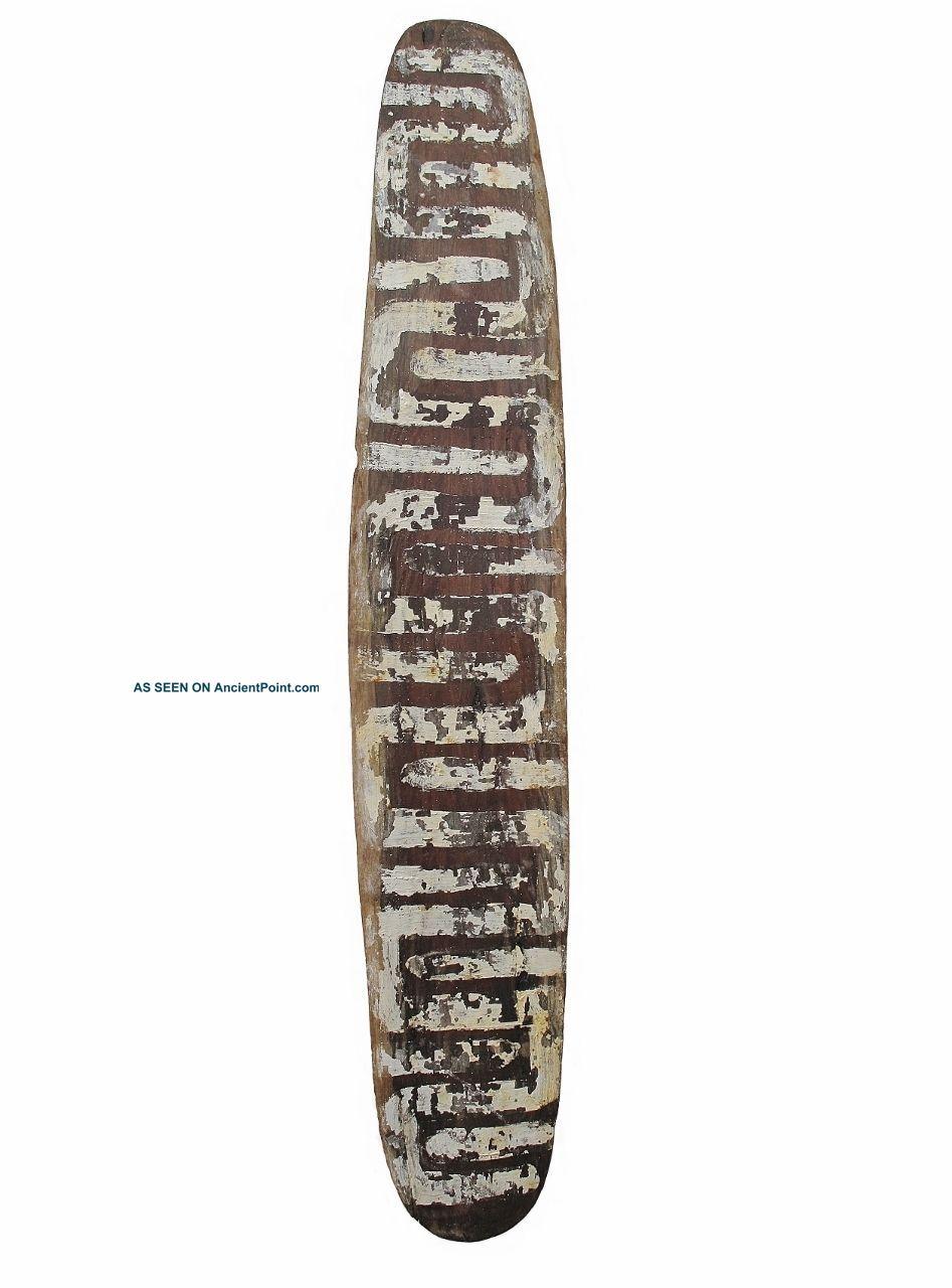Antique Aboriginal Old Western Desert Shield 74cm Pacific Islands & Oceania photo