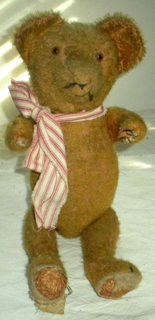 Antique C1900–1920 Loved Teddy Bear Glass Eyes & Red & White Scarf Jointed Vafo photo