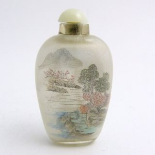 Chinese Reverse Painted Glass Snuff Bottle photo