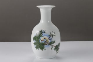 Exquisite Chinese Painting Bird Porcelain Vase Qianlong Mark H473 photo