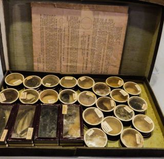 Antique 1890 Palestine Museum Cabinet Spices Seeds Powders Biblical Specimens photo