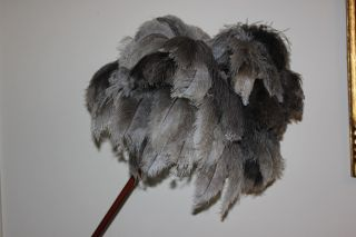 One Extra Large Soft Ostrich 60grm Feather Head Display Duster 39 Inches Overall photo