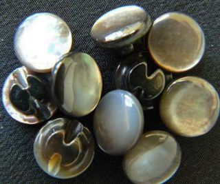Antique Mother Of Pearl Buttons Black Back Hole 40 Count photo