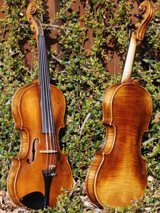 Fine & Rare Antique Violin By Ladislav F.  Prokop,  Chrudim 1917.  Tone photo