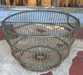 Very Large Vintage Oyster Gathering Basket Old Green Paint Circa 1940 ' S photo