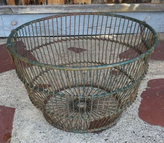 Large Vintage Oyster Gathering Basket Green Paint Circa 1940 photo