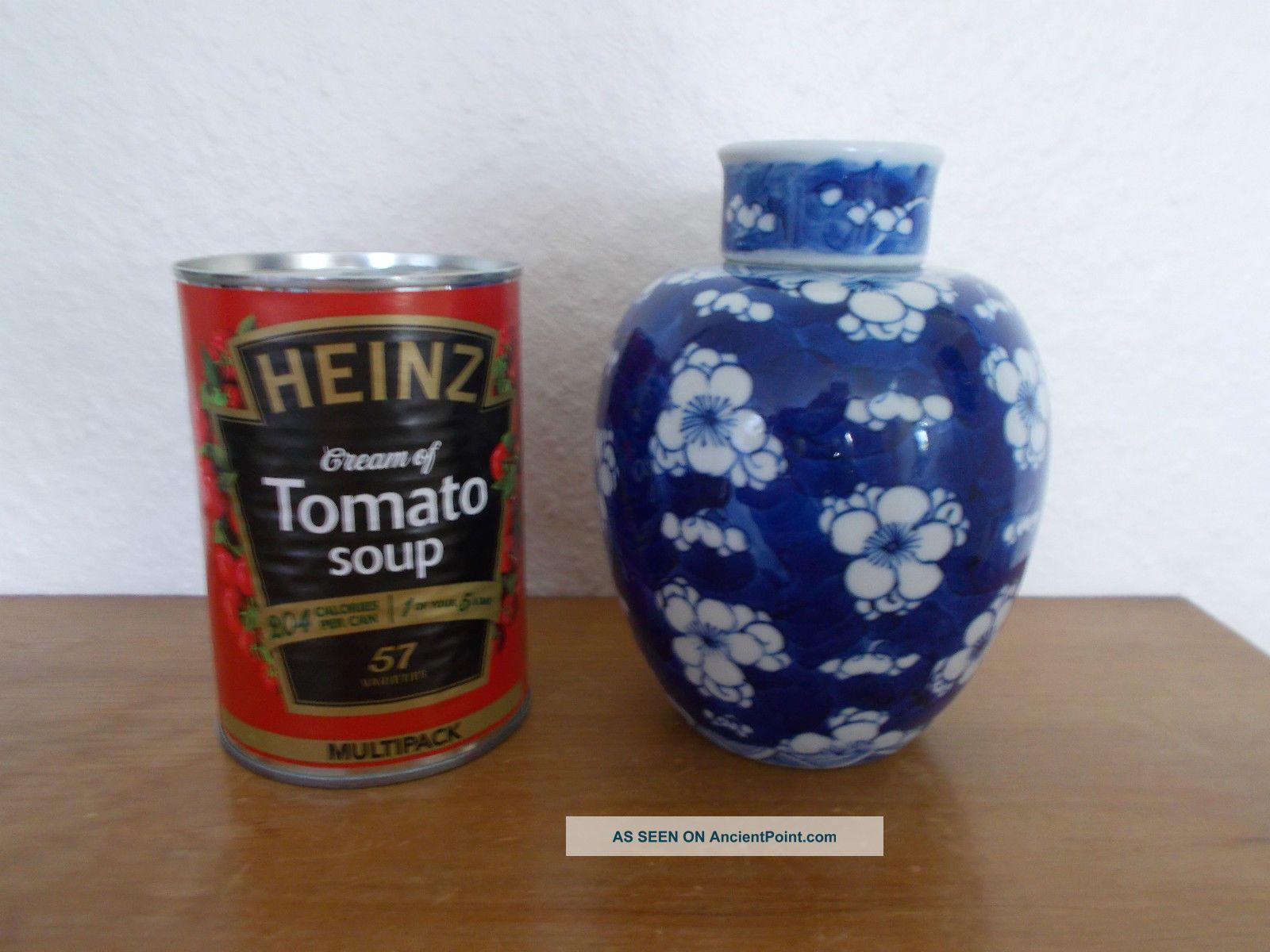 Chinese Porcelain Prunus Blossom Ginger Jar,  With Double Ring Kangxi Base Mark. Vases photo