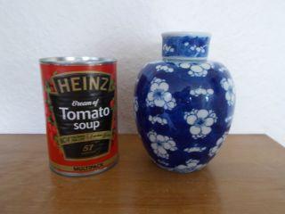 Chinese Porcelain Prunus Blossom Ginger Jar,  With Double Ring Kangxi Base Mark. photo