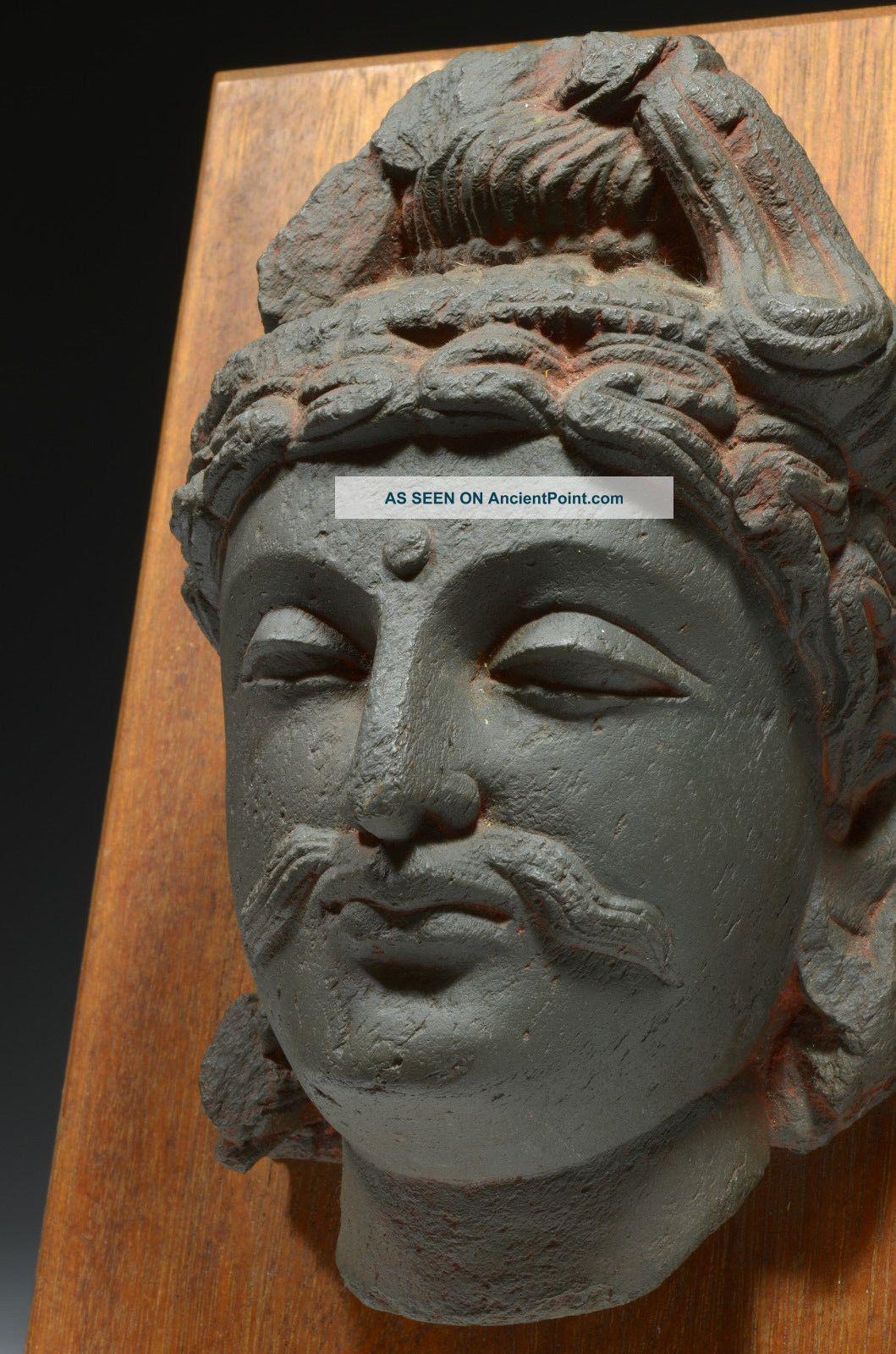 Handsome Gandhara Gandharan Buddha Head On Wood Mount (cast) Near Eastern photo