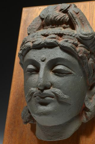 Handsome Gandhara Gandharan Buddha Head On Wood Mount (cast) photo