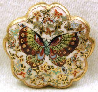Antique Meiji Satsuma Button Detailed Butterflies Fancy Scallop Border 1 & 1/8