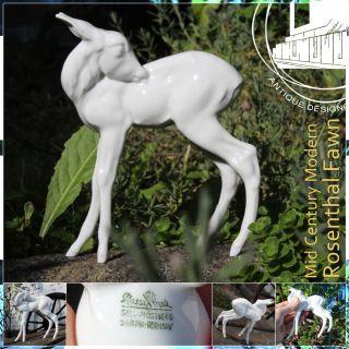 Wonderful Rosenthal Fawn Mid Century Modern Ceramic Sculpture Deer Reh 50s 60s D photo