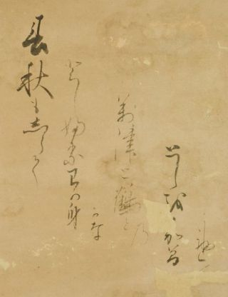 Hanging Scroll Japanese Painting Antique Crane Old Asian Ink Japan 通根 久世 B261 photo