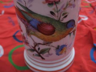 Exceptional Antique Hand Painted Porcelain Apothecary Style Jar Bird Floral photo