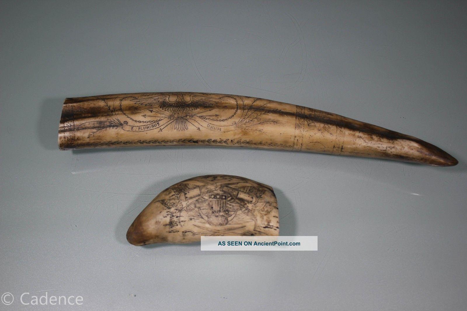 Faux Scrimshaw Sperm Whale Walrus Tusks.  Crossed Pistols & Bedford.  Tempest. Scrimshaws photo