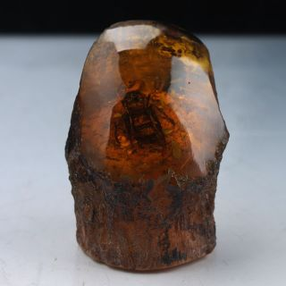 100 Natural Amber Statue W Cicada Rm0137 photo