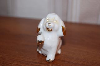 Capodimonte Porcelain Dog Figurine - White With Gold Trim And Crystal Eyes photo