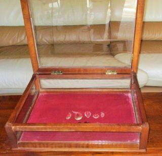 Antique Oak Wood Store Display Jewelry Case Box Glass Felt Large 23