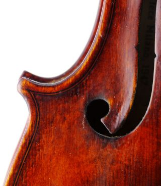 Italian,  Antique Natale Novelli Old 4/4 Master Violin - Geige,  Fiddle 小提琴 photo