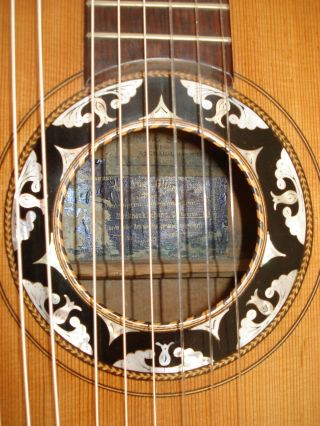 Romantic 11 Sting Harpguitar From Master Luthier W.  Aug.  Glier Ca.  1900 photo