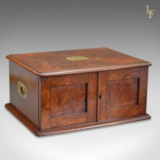 Antique Collectors Chest,  Victorian Specimen Cabinet,  Burr Walnut,  English C1880 photo