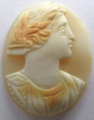1800s Cameo Lithophane Of Napoleon As Emperor In Shell photo