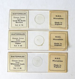 3 X Diatom Strew Microscope Slides By Nbs Scottish Lochs photo