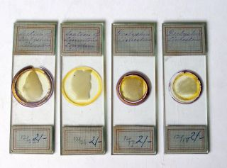 4 X Early Petrology Microscope Slides Of Derbyshire Limestone Sections photo