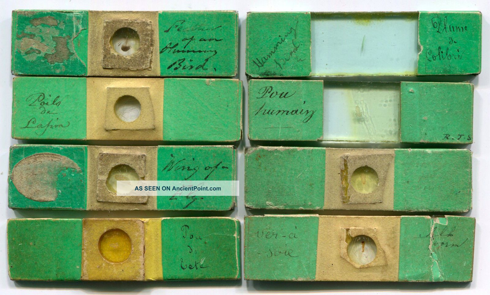 8 Very Early Joseph Bourgogne Microscope Slides,  Ca.  1840s Microscopes & Lab Equipment photo