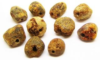 Group Of 10 Early Bronze Age Amber Beads C.  1900 - 1600 Bc Beaker Culture photo