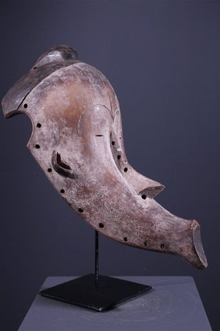 Gabon: Old & Tribal African Mask From The Fang - 48 Cm. photo