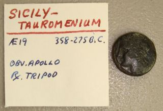 358 - 275 Bc Sicily,  Tauromenium Apollo / Tripod Ancient Greek Ae19 Vf photo