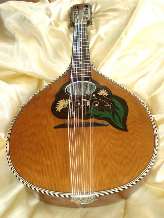 German Mandriola 12 Strings Ca.  1920 photo