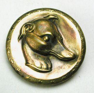 Antique Brass Sporting Button Greyhound Dog Head Design - 1