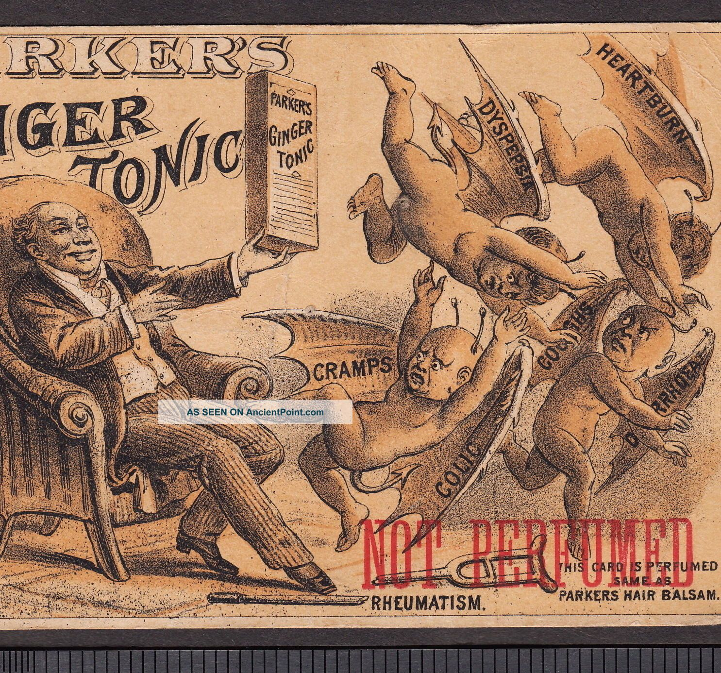 Demon Diseases Female Weakness Remedy Parkers Ginger Tonic Hair Advertising Card Quack Medicine photo