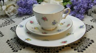 Crown Staffordshire Teacup Saucer & 8 1/4