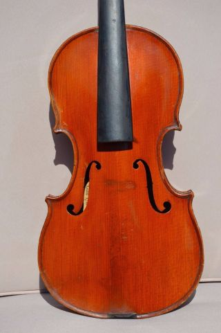 Old French Violin Stradivarius Model photo
