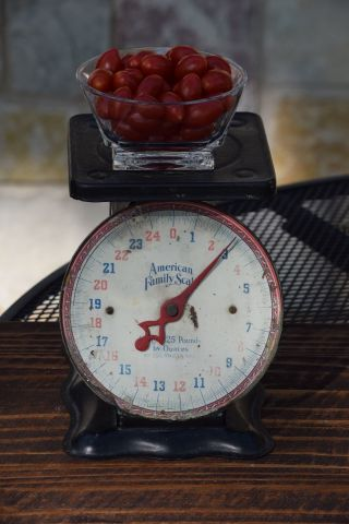 Vintage Kitchen Scale,  American Family Scale,  25lb Scale,  Vintage Kitchen Decor photo