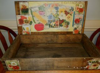 Antique Country Store Seed Display Box Edw.  Cuttings Maine Huge Rare L@@k photo